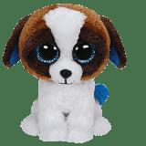 Duke the Brown & White Dog (medium)