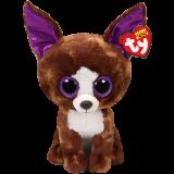 Dexter the Brown Chihuahua (medium)