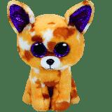 Pablo the Tan Chihuahua (medium)