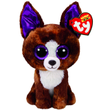 Dexter the Brown Chihuahua (regular)