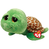 Zippy the Green Turtle (medium)
