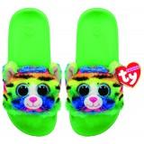 Tigerly the Rainbow Cat Slides Small