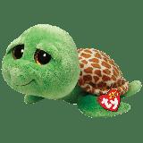 Zippy the Green Turtle (medium)